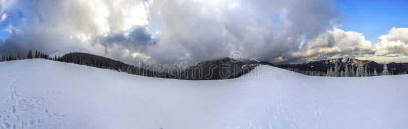 Paisagem da montanha do inverno com pinheiros cobertos de neve e o baixo c foto de stock royalty free