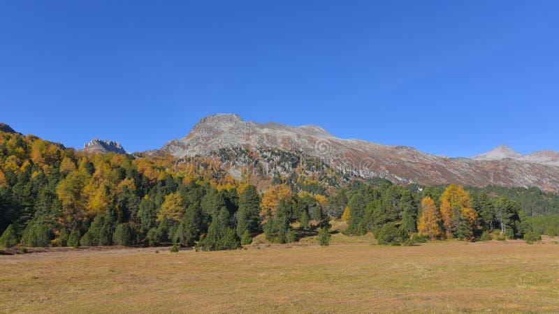 Paisagem da montanha do outono foto de stock