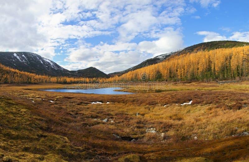 Paisagem da montanha do outono fotografia de stock