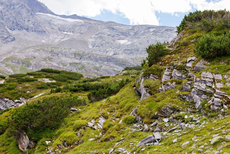 Paisagem da montanha e da geleira em Tirol Áustria, região de Hintertux imagem de stock royalty free