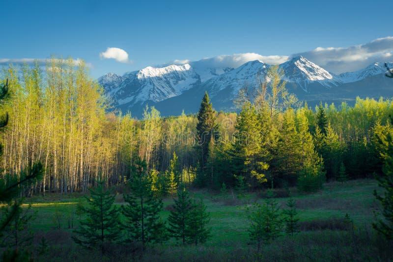 Paisagem da montanha em do norte BC, Canadá imagens de stock