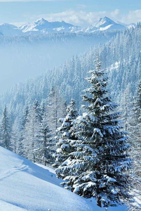 Paisagem da montanha enevoada do inverno da manhã fotografia de stock