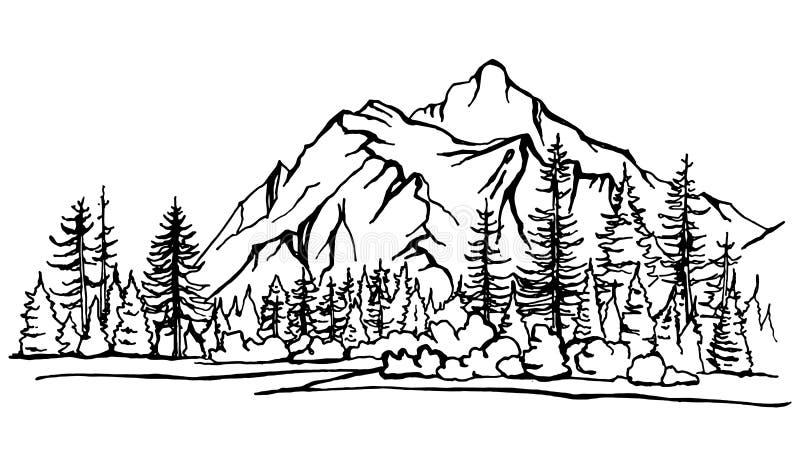 Paisagem da montanha, esboço dos pinheiros da floresta ilustração stock