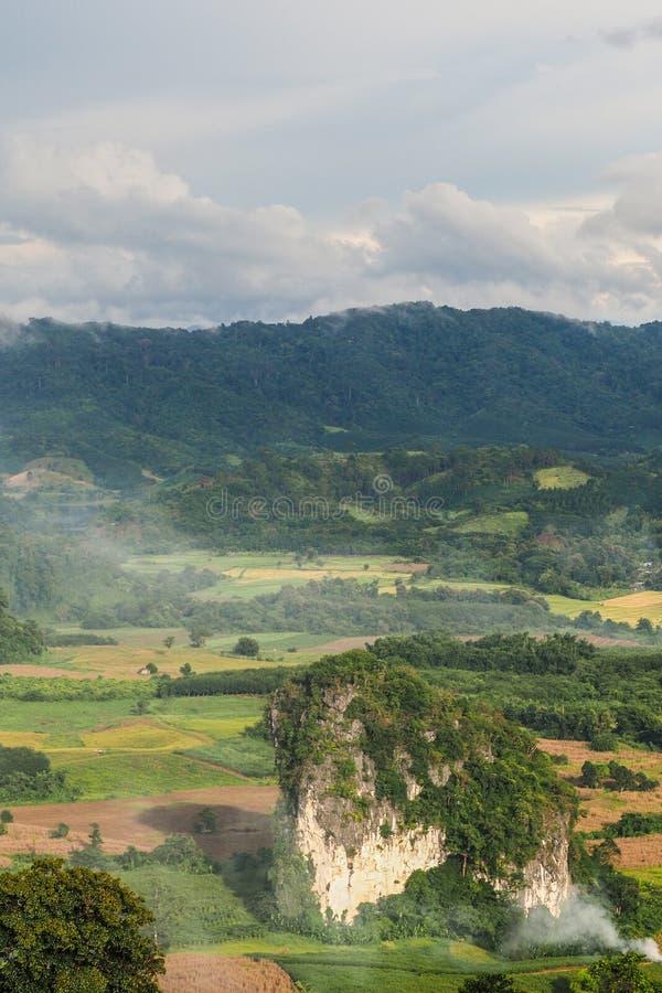 Paisagem da montanha Forest Park de Phu Lanka na província T de Phayao fotos de stock