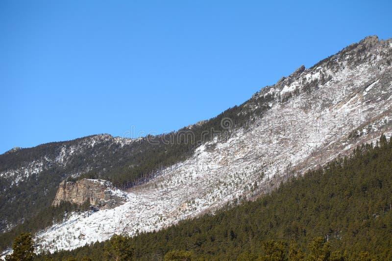 Paisagem da montanha no inverno imagens de stock royalty free