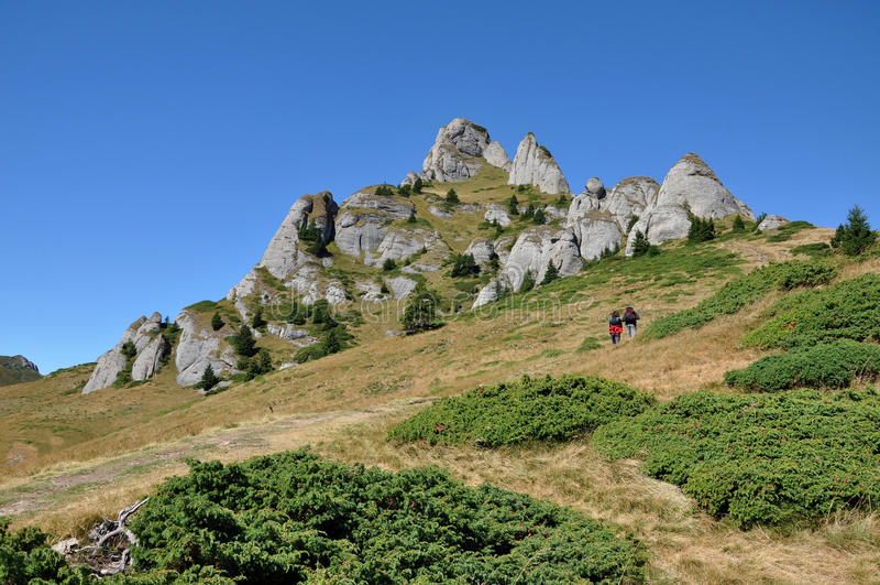 Paisagem da montanha nos Carpathians foto de stock
