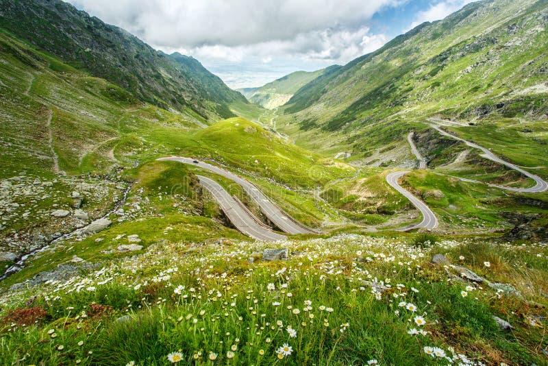 Paisagem da montanha Romanian Carpathians imagem de stock royalty free