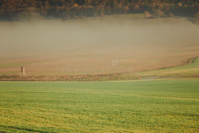 Paisagem da névoa do campo do país no dia do outono imagem de stock