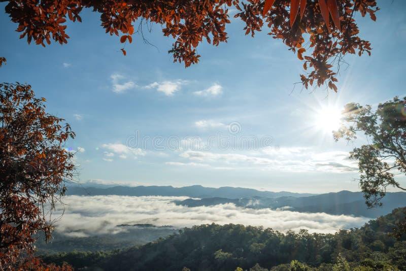 Paisagem da névoa da manhã com camada da montanha em Mae Yom National Park, província de Phrae fotos de stock royalty free
