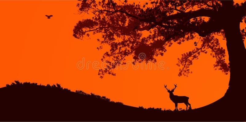 Paisagem da natureza ilustração royalty free