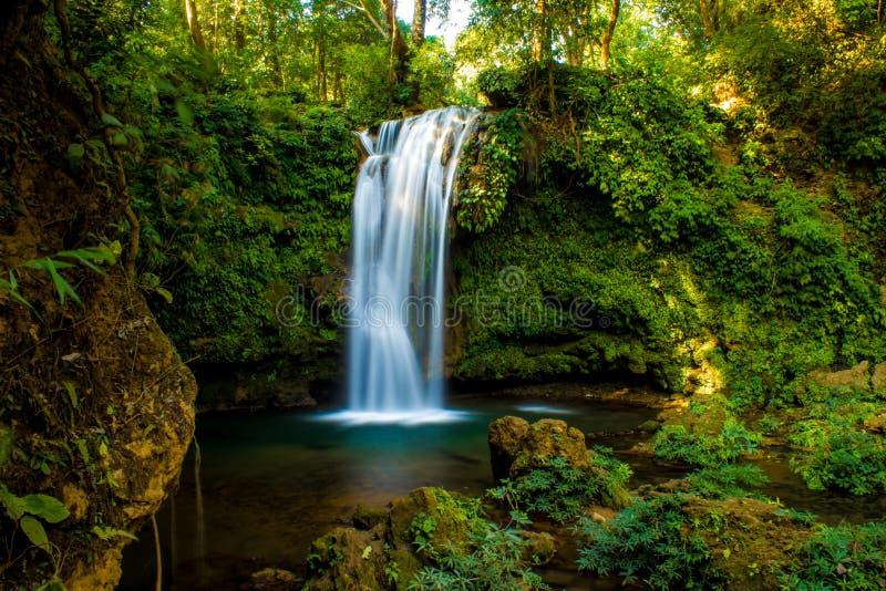 Paisagem da natureza da cachoeira foto de stock royalty free