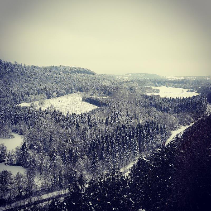 Paisagem da natureza sob a neve foto de stock royalty free