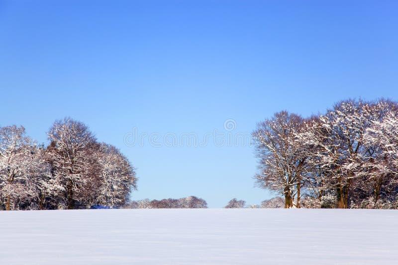 Paisagem da neve imagens de stock royalty free