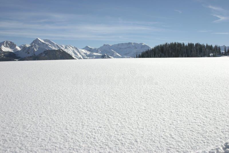 Paisagem da neve imagens de stock