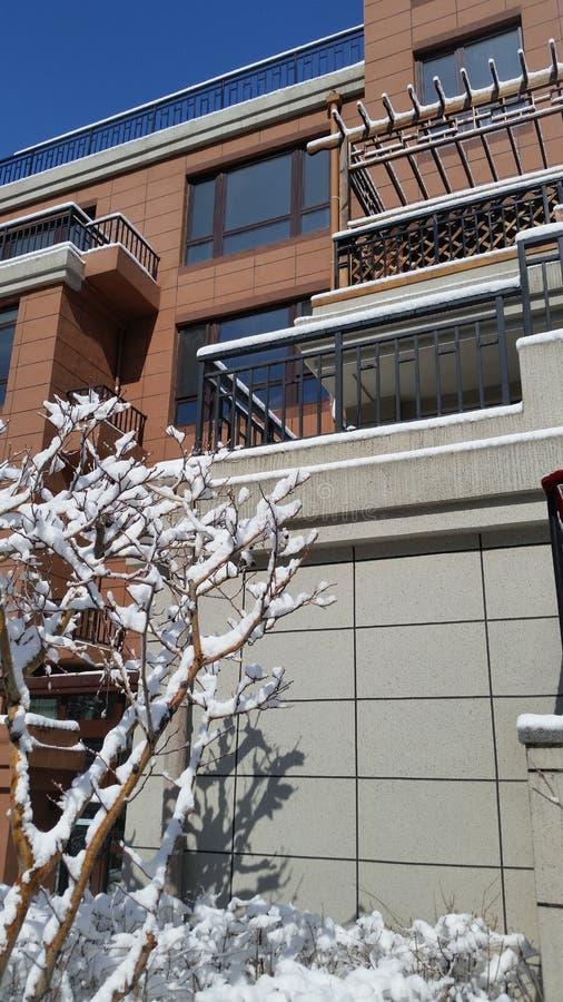 Paisagem da neve-covred fotografia de stock