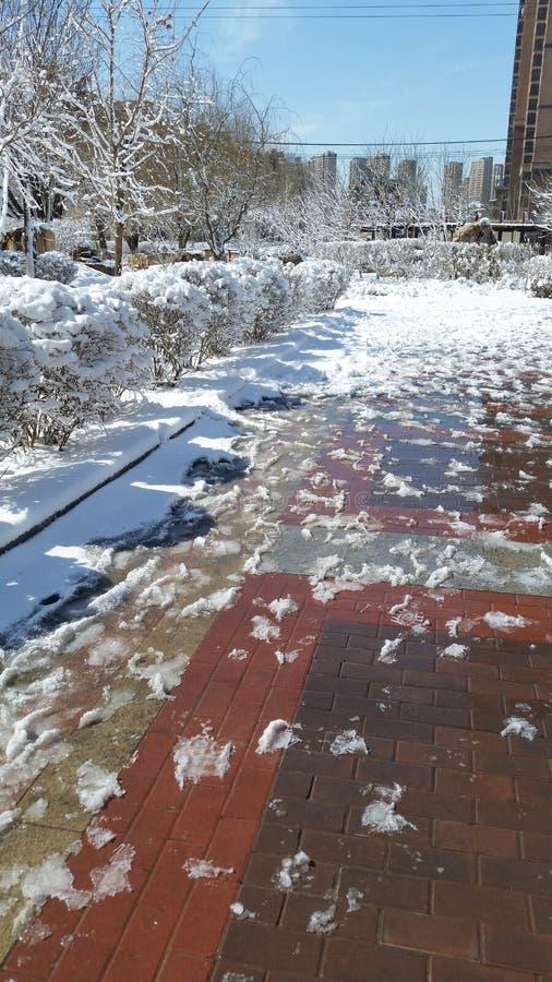 Paisagem da neve-covred fotos de stock royalty free