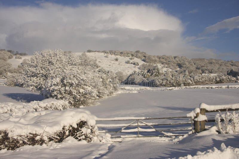 Paisagem da neve do inverno, Cardiff, Reino Unido fotos de stock