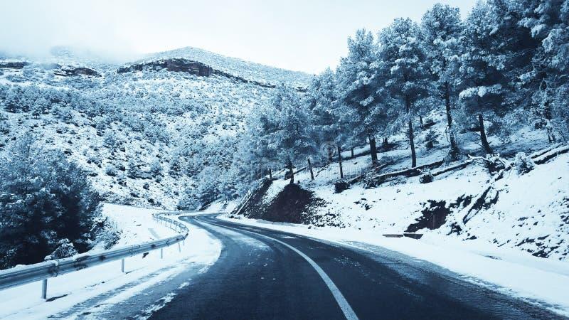 Paisagem da neve da montanha imagem de stock