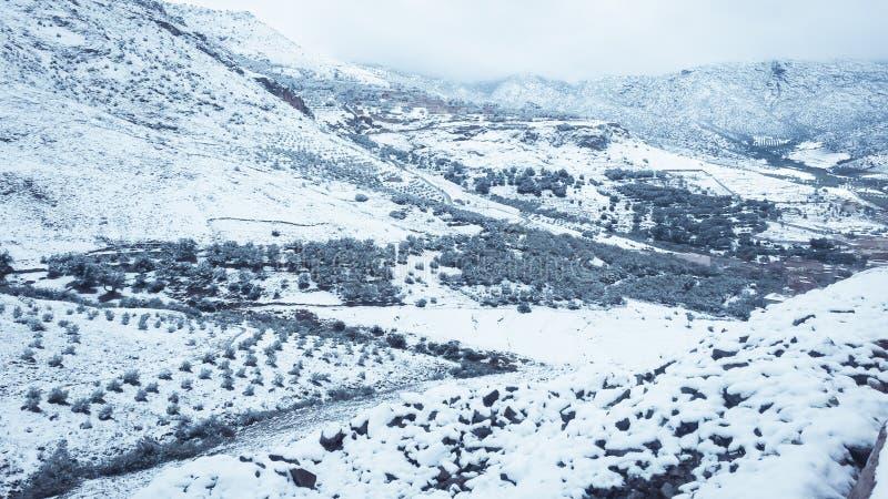 Paisagem da neve da montanha fotografia de stock