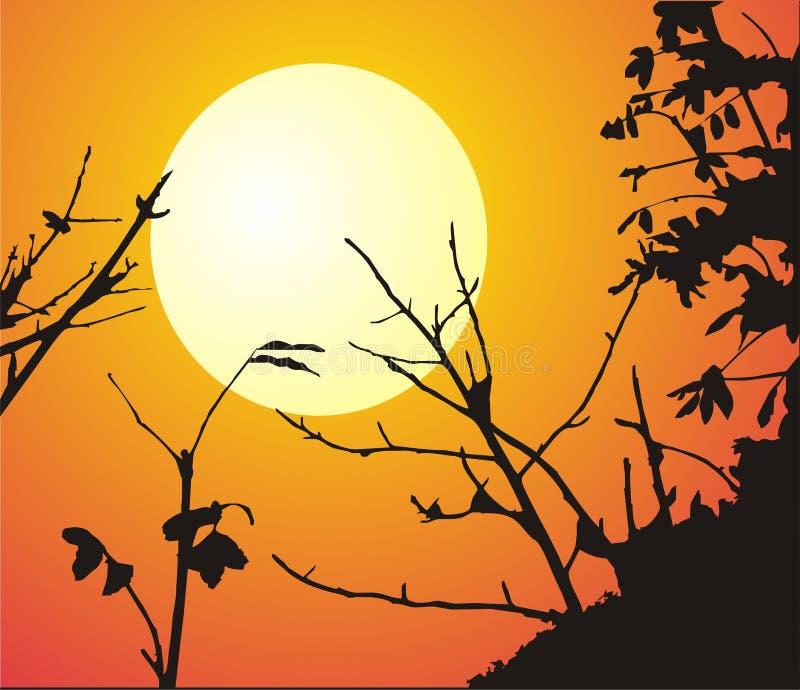 Paisagem da noite com sol ilustração do vetor