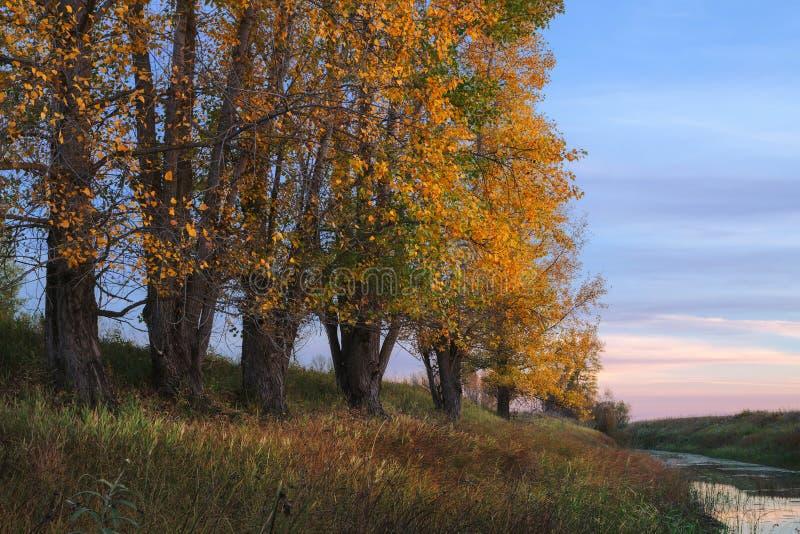 Paisagem da noite do outono imagens de stock