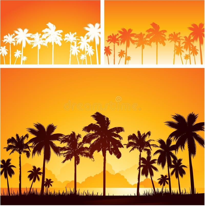 Paisagem da palmeira no por do sol ilustração stock