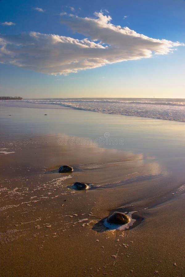 Paisagem da praia com vertical 2 das rochas imagens de stock