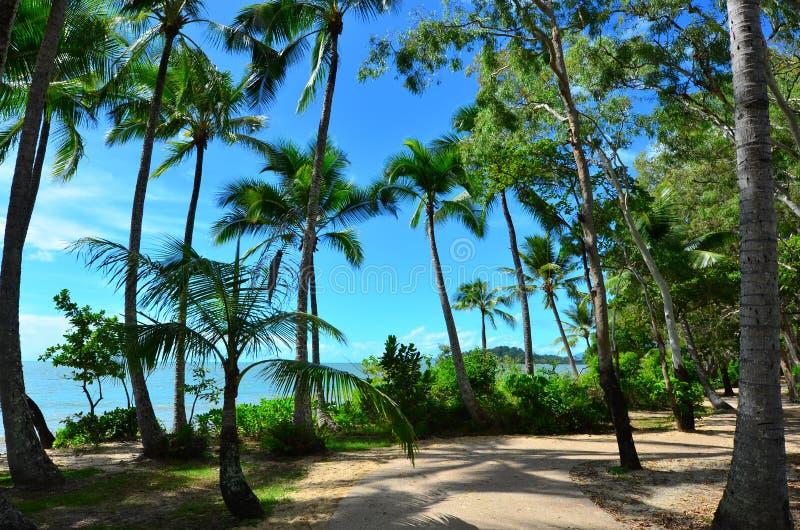 Paisagem da praia de Clifton perto dos montes de pedras Queensland Austrália imagem de stock