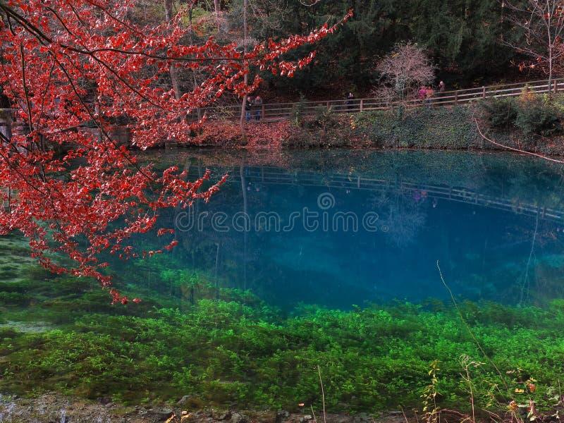 Paisagem da queda no lago Blautopf foto de stock
