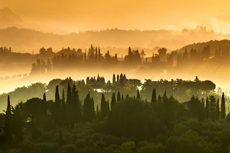 Paisagem da vila de Toscânia em uma manhã obscura em julho fotografia de stock royalty free