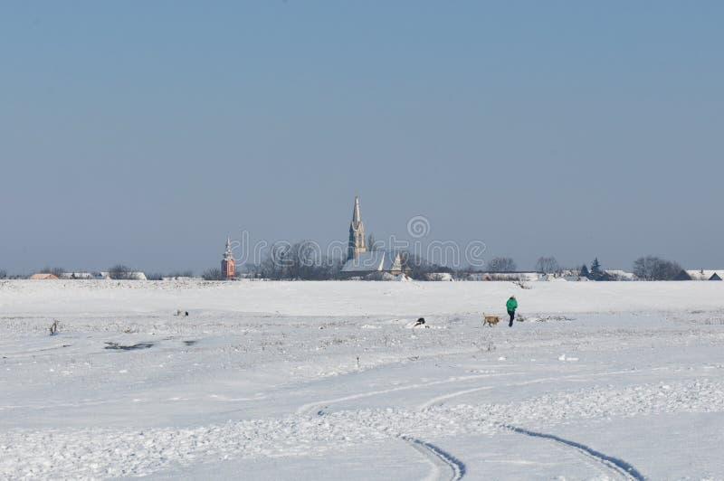 Paisagem da vila na estação do inverno fotografia de stock