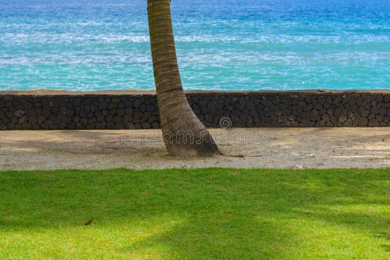 A paisagem da vista bonita de uma praia do oceano com grama verde, areia dourada, azul celeste molha e céu azul com as nuvens em  foto de stock