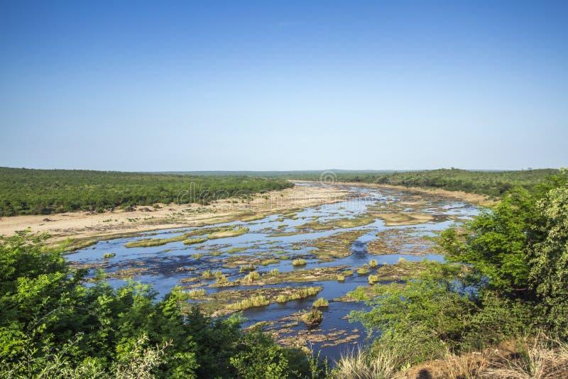 Paisagem das horas de verão no parque nacional de Kruger, África do Sul fotografia de stock royalty free