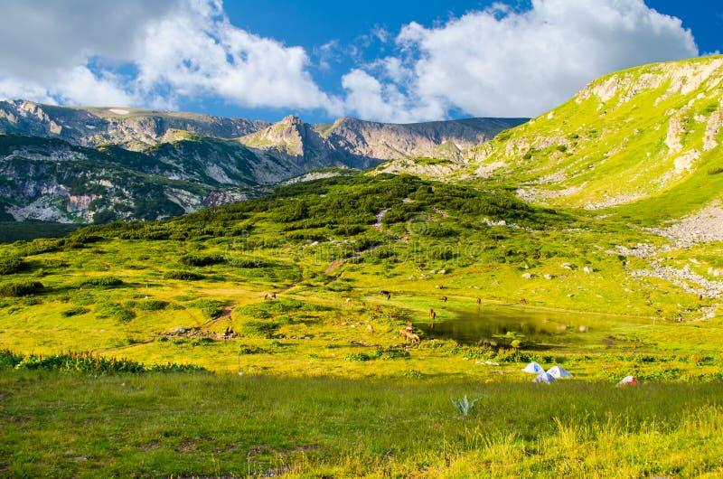 Paisagem das montanhas de Rila fotografia de stock royalty free