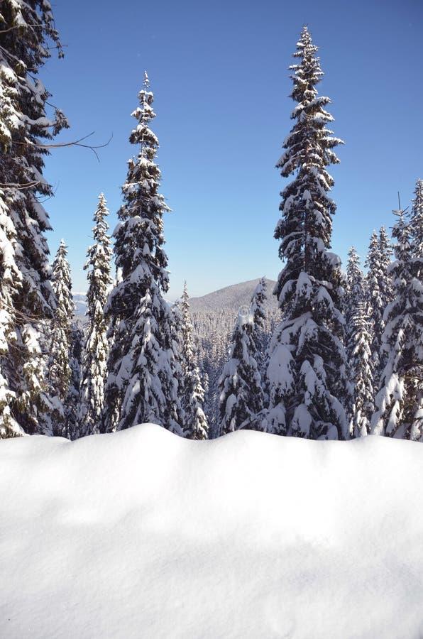 Paisagem das montanhas do inverno fotografia de stock