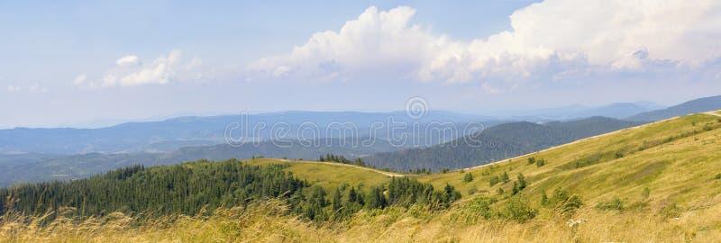 Paisagem das montanhas dos Cárpatos fotografia de stock royalty free