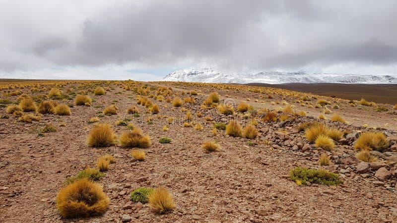 A paisagem das montanhas entre o Chile e Bolívia fotos de stock royalty free
