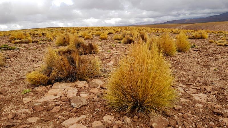 A paisagem das montanhas entre o Chile e Bolívia fotografia de stock