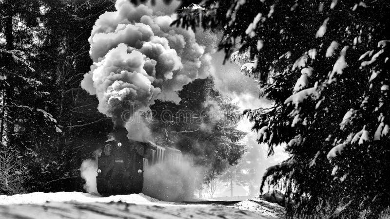 Paisagem de Bucovina do Romanian com o trem velho do vapor no tempo de inverno fotografia de stock royalty free