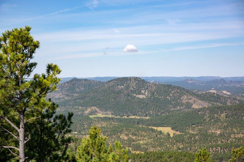 Paisagem de Custer State Park fotografia de stock