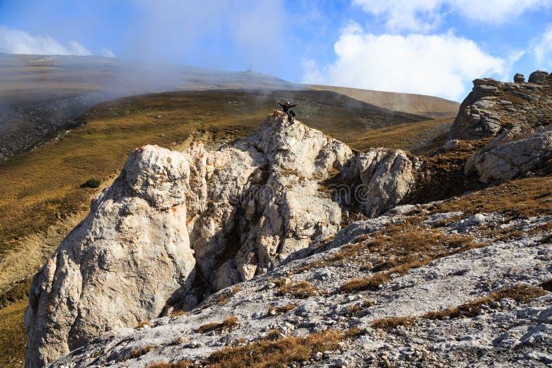 Paisagem de excita??o ele as montanhas romenas de Carpatians fotos de stock