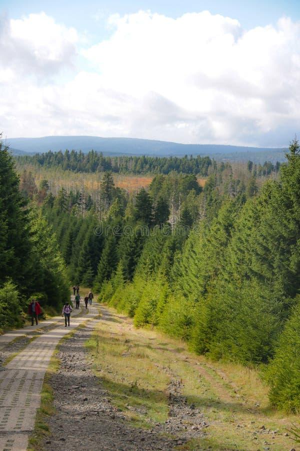 Paisagem de Goetheweg em Brocken, Harz fotografia de stock