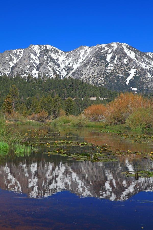 Paisagem de Lake Tahoe em Califórnia fotos de stock