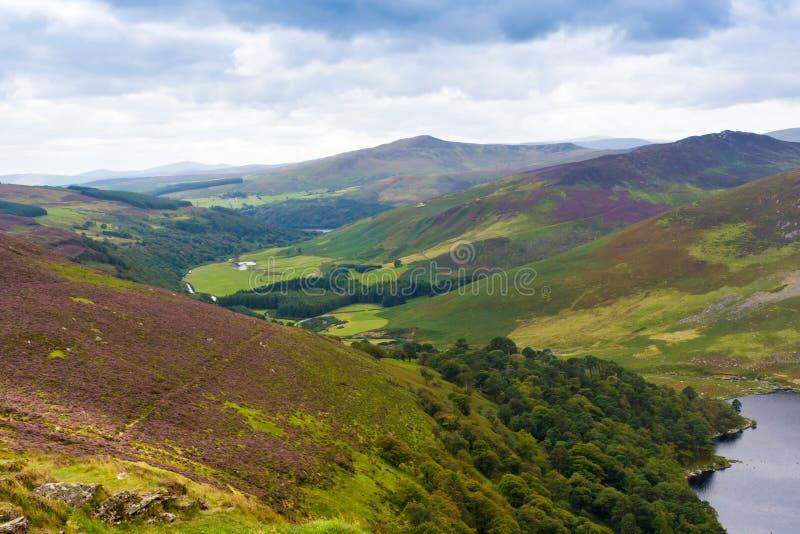 Paisagem de montanhas de Wicklow, Ireland foto de stock