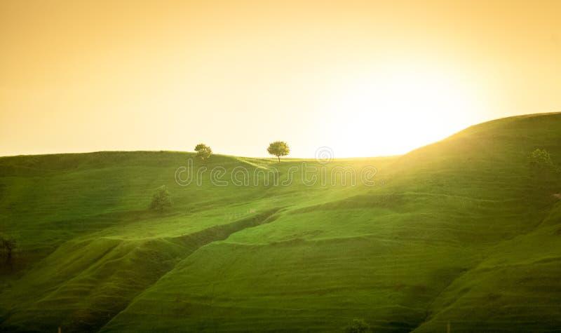 Paisagem de montes verdes no nascer do sol fotos de stock