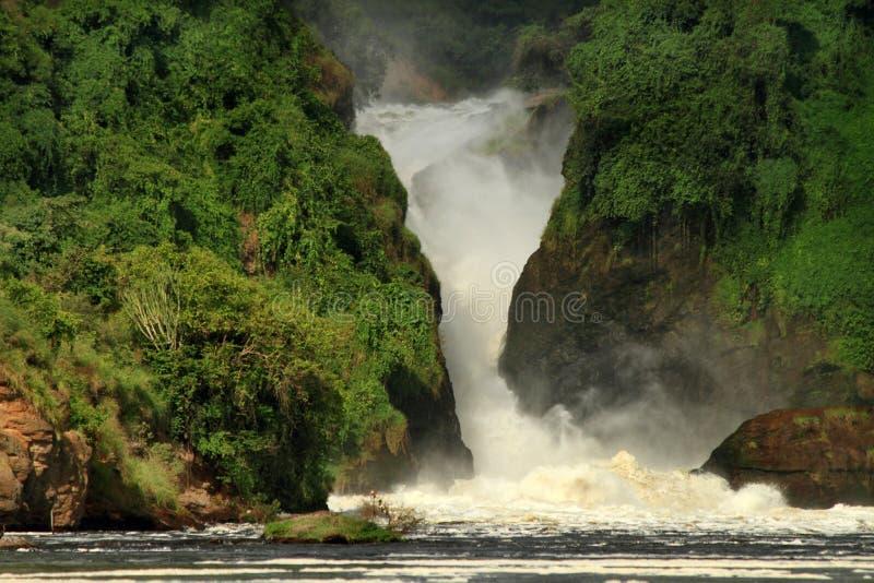 Paisagem de Murchison Falls fotos de stock royalty free