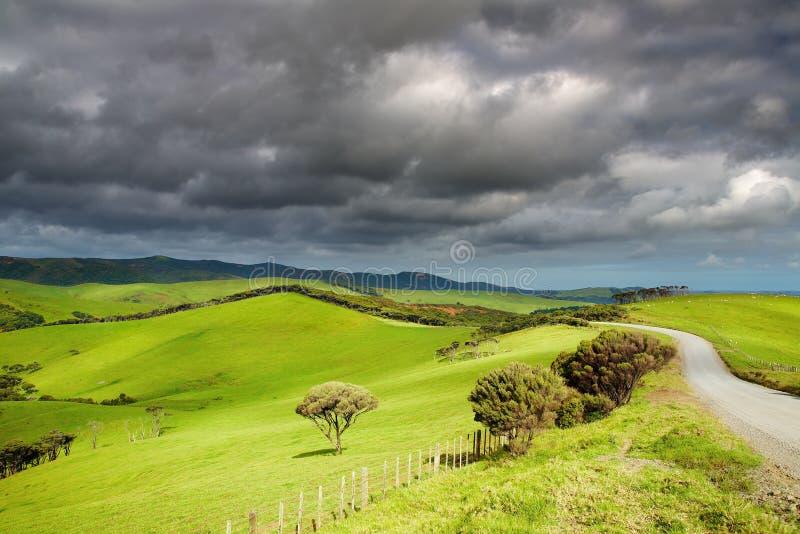 Paisagem de Nova Zelândia imagem de stock