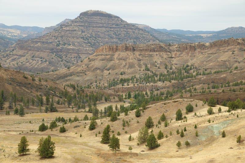 Paisagem de Oregon fotografia de stock