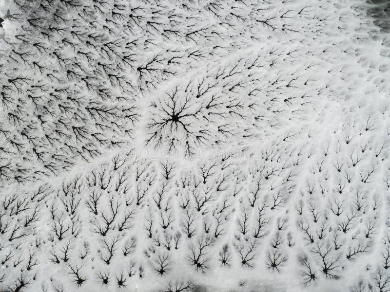 Paisagem de rachamento do gelo do inverno - vista aérea