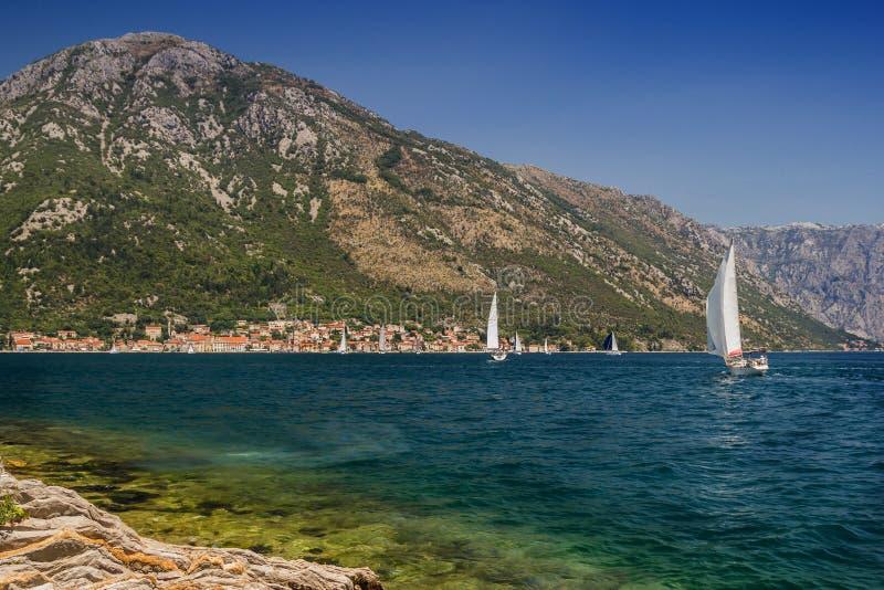 Paisagem de Sunny Mediterranean Montenegro, baía de Kotor fotografia de stock royalty free